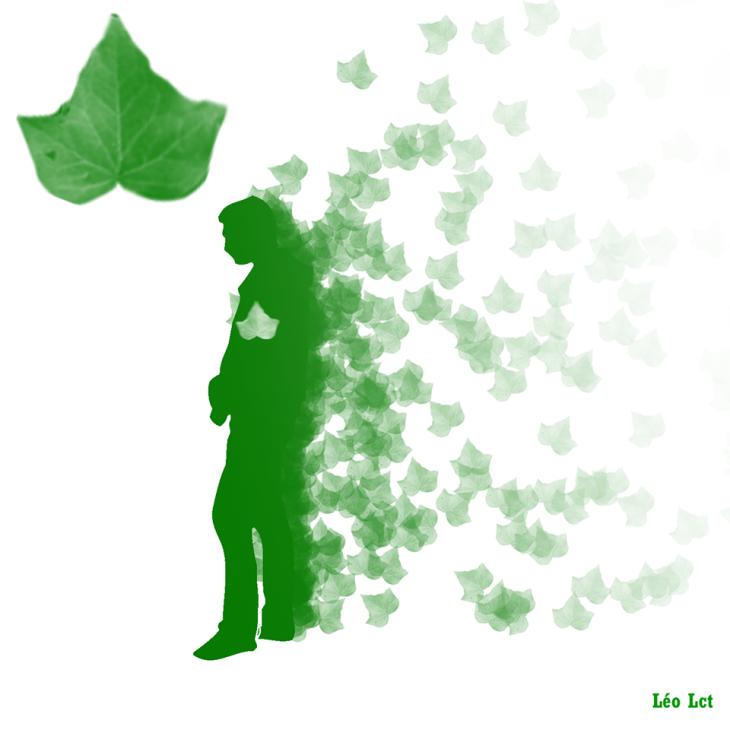 feuilles_mortes_special